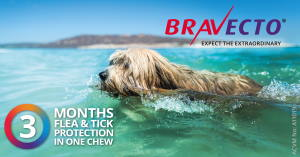 Click for Bravecto chew product information